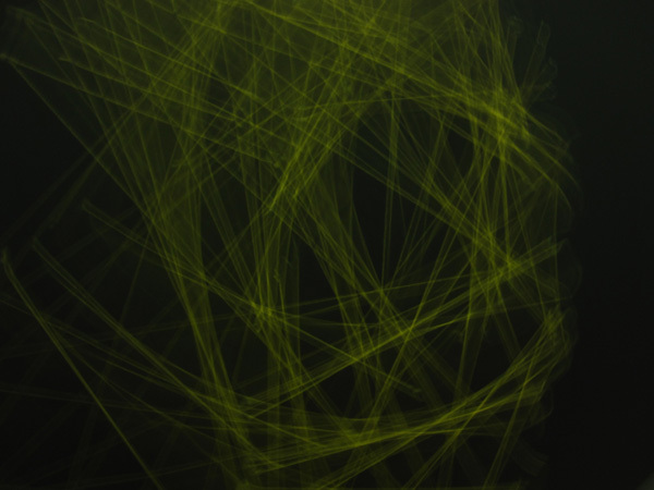 blog-string-lines1_600w450h.jpg